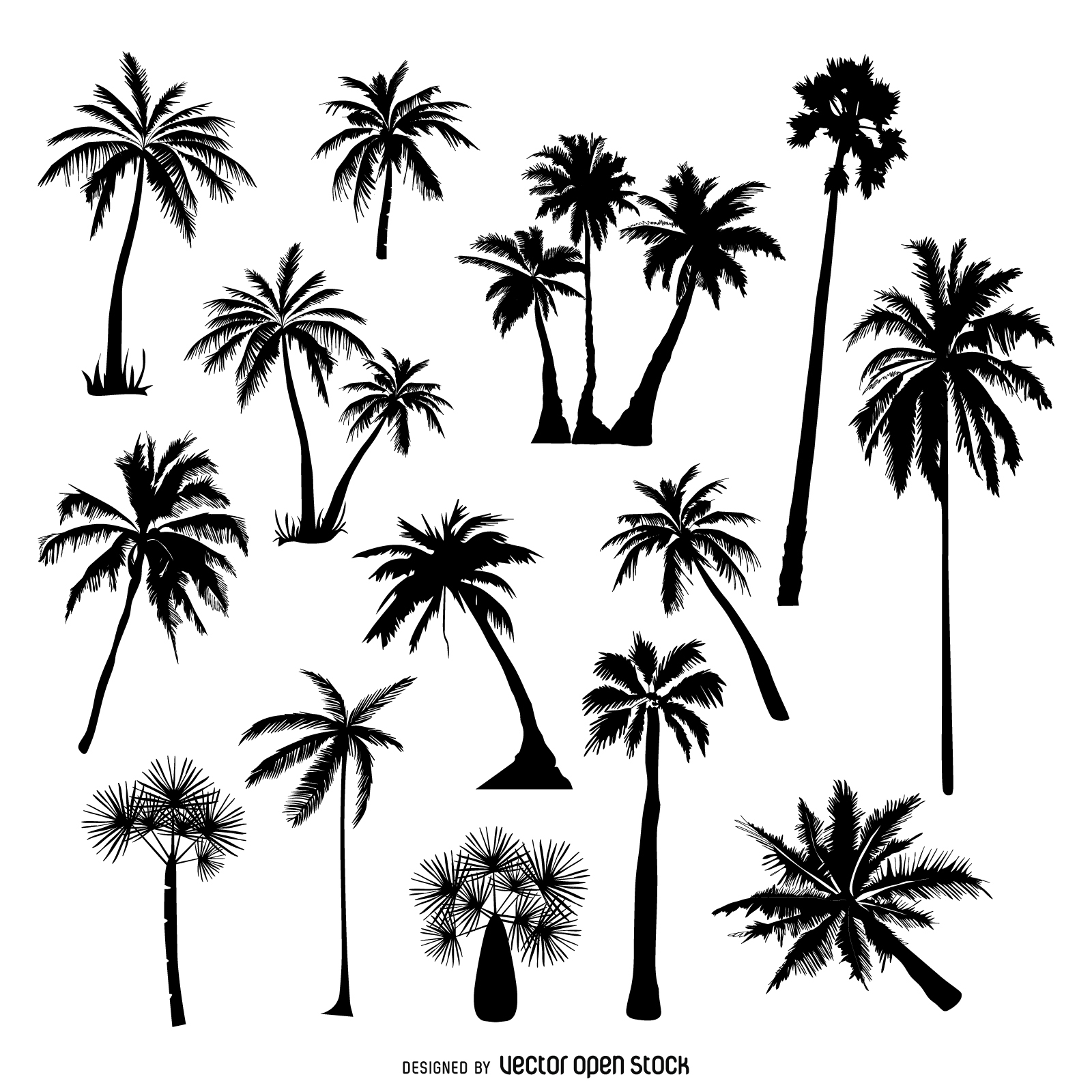1600x1600 Collection Of Palm Tree Silhouettes