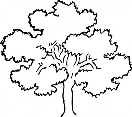 425x377 Black And White Tree Drawing
