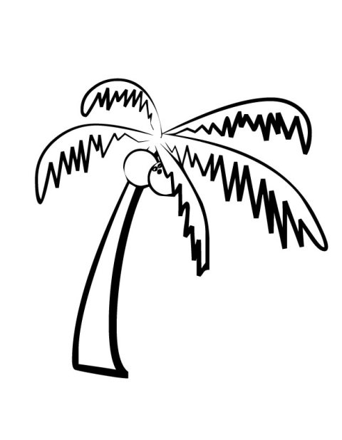 480x617 Palm Trees Drawing Easy