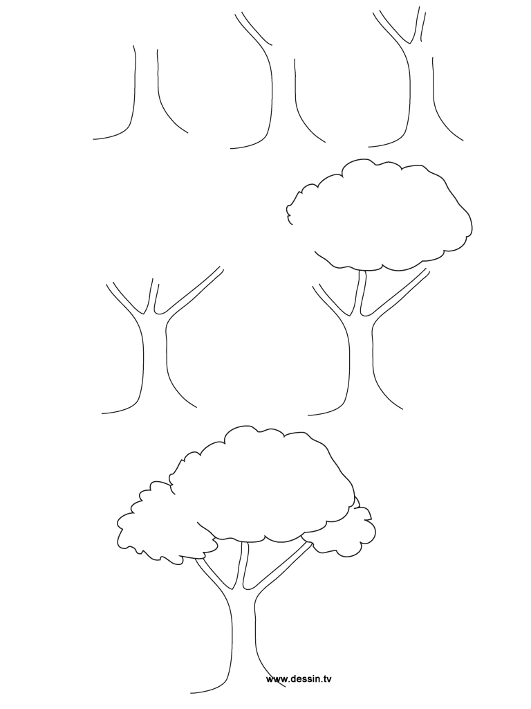 768x1024 Simple Drawing Of A Tree How To Draw Trees Step By Easy Sketch