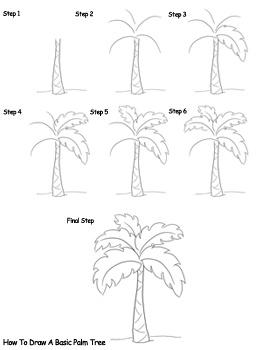 270x350 Drawn Palm Tree Line Drawing