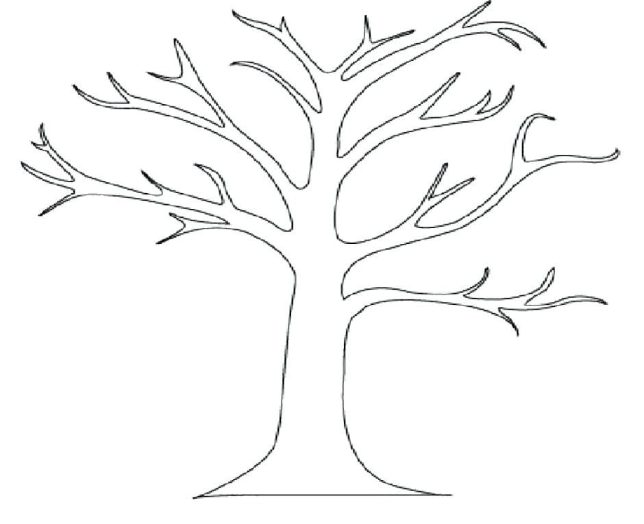 940x765 Outline Of A Tree Apple Tree Without Leaves Coloring Pages Tree