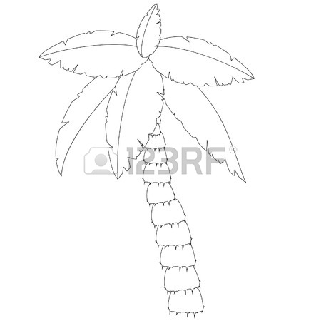 450x450 Palm Tree Outline Drawings, Coconut Tree, Palm Tree Vector