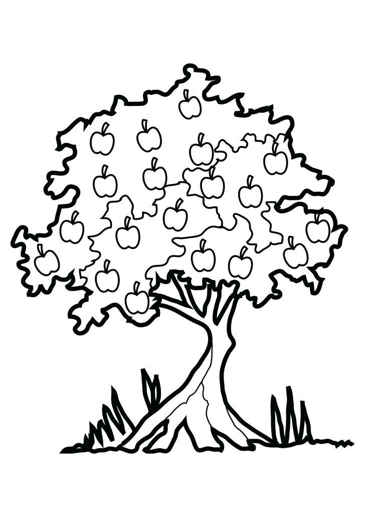 728x1030 Palm Tree Trunk Coloring Sheet Tree Trunk Stencil