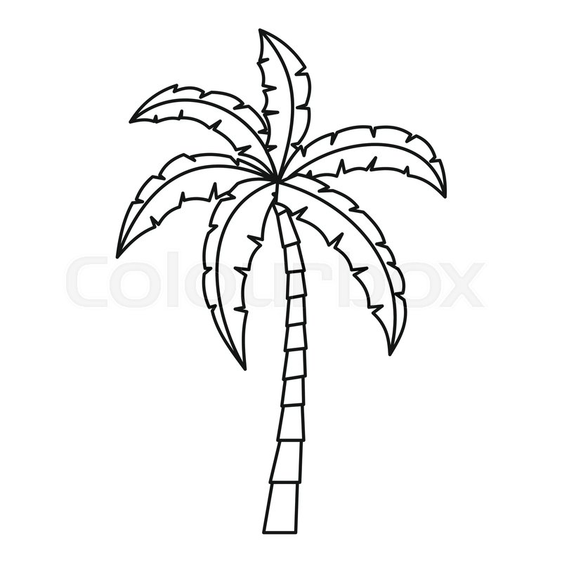 800x800 Palm Icon. Outline Illustration Of Palm Vector Icon For Web