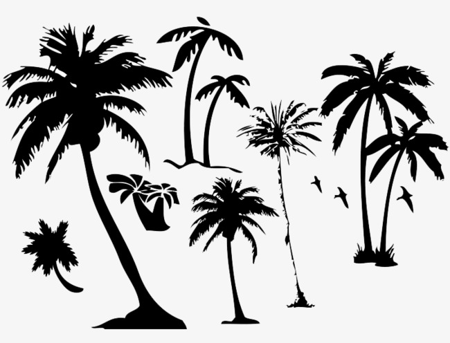 650x496 Coconut Silhouette, Coconut Trees, Silhouette, Black Png Image