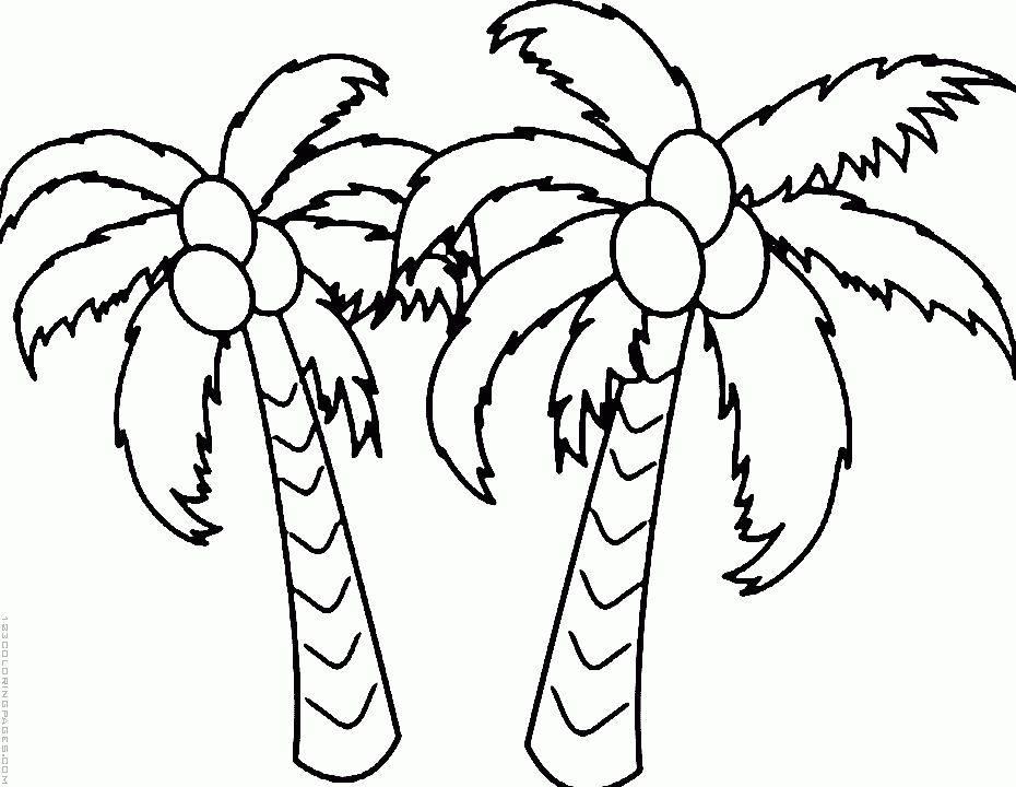 Palm Tree Drawing Png at GetDrawings