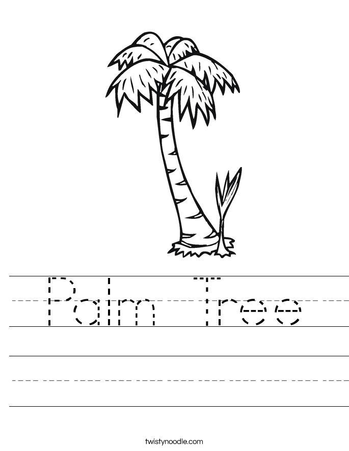 685x886 Palm Tree Worksheet