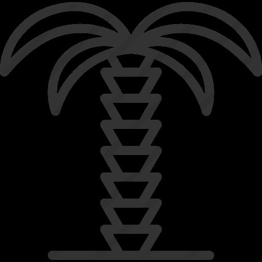 512x512 Palm Tree