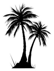227x300 Two Palm Trees Png Clipart Image Summer Clip