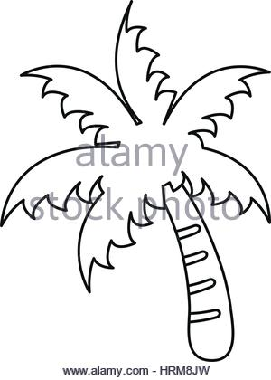 300x420 Palm Tree Icon. Simple Flat Illustration. Vector Icon. Black