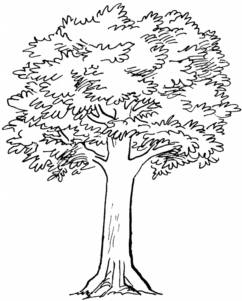 823x1024 Simple Tree Drawing