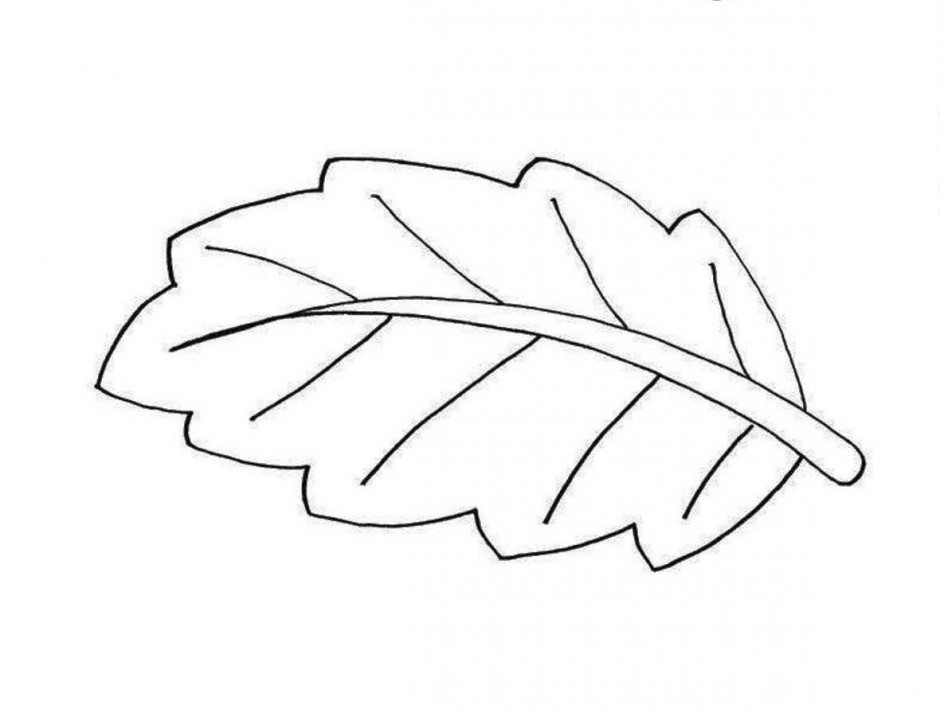 940x716 Simple Leaf Clip Art Black And White Clipart