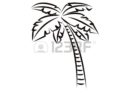 450x327 Coconut Tree For Black And White Image On A White Background Stock