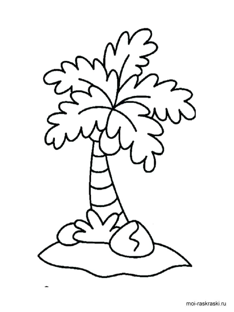 750x1000 Free Palm Tree Coloring Pages For Kids Printable 2