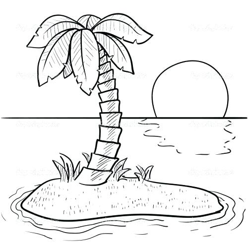 500x500 Palm Tree Beach Coloring Pages Best Images On Draw Mandalas