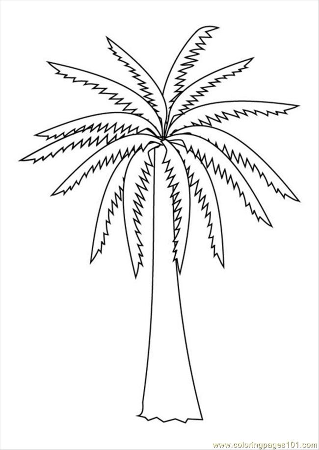 650x918 Palm Tree Coloring Pages For Kids