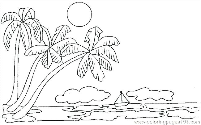 650x405 Palm Tree Coloring Pages Zoom Palm Tree Coloring Page Genesisar.co