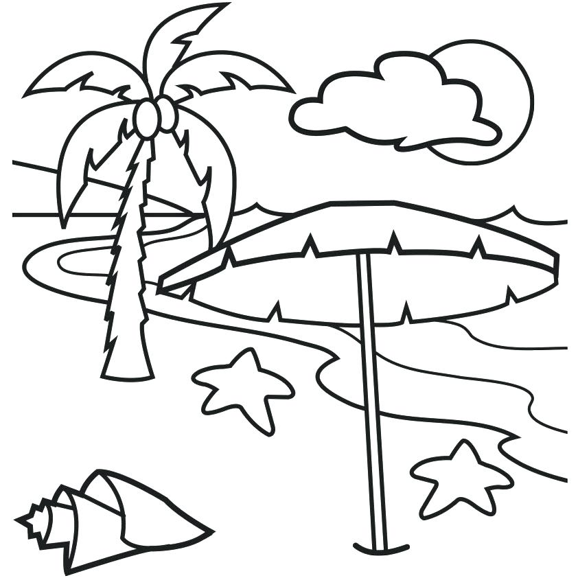 842x842 Palm Tree Coloring Pages