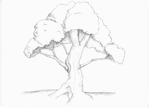 500x364 Stumped Over Super Easy Step By Step Instructions To Draw Trees