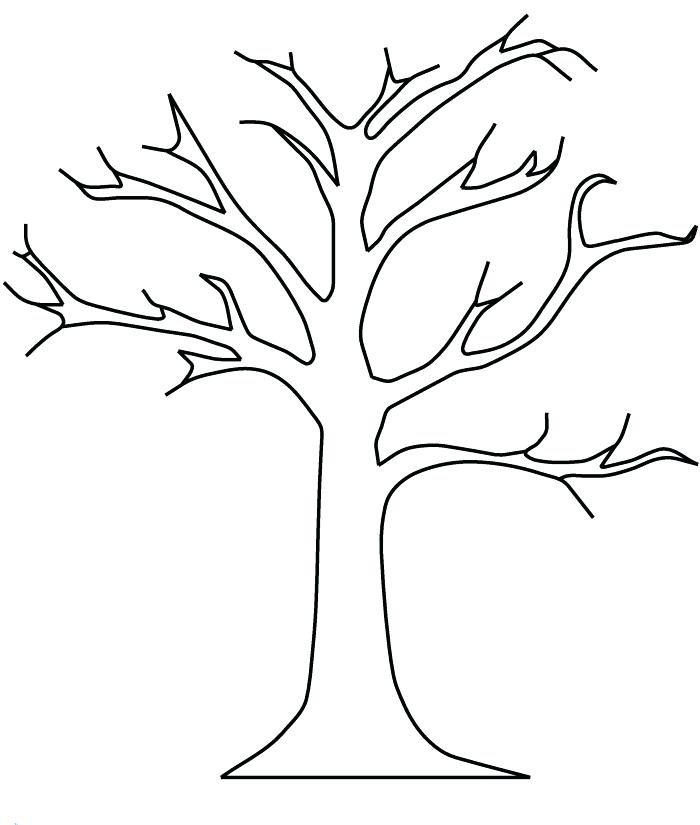 700x825 Coloring Pages Of Trees Plus Free Coloring Pages For Tree Coloring