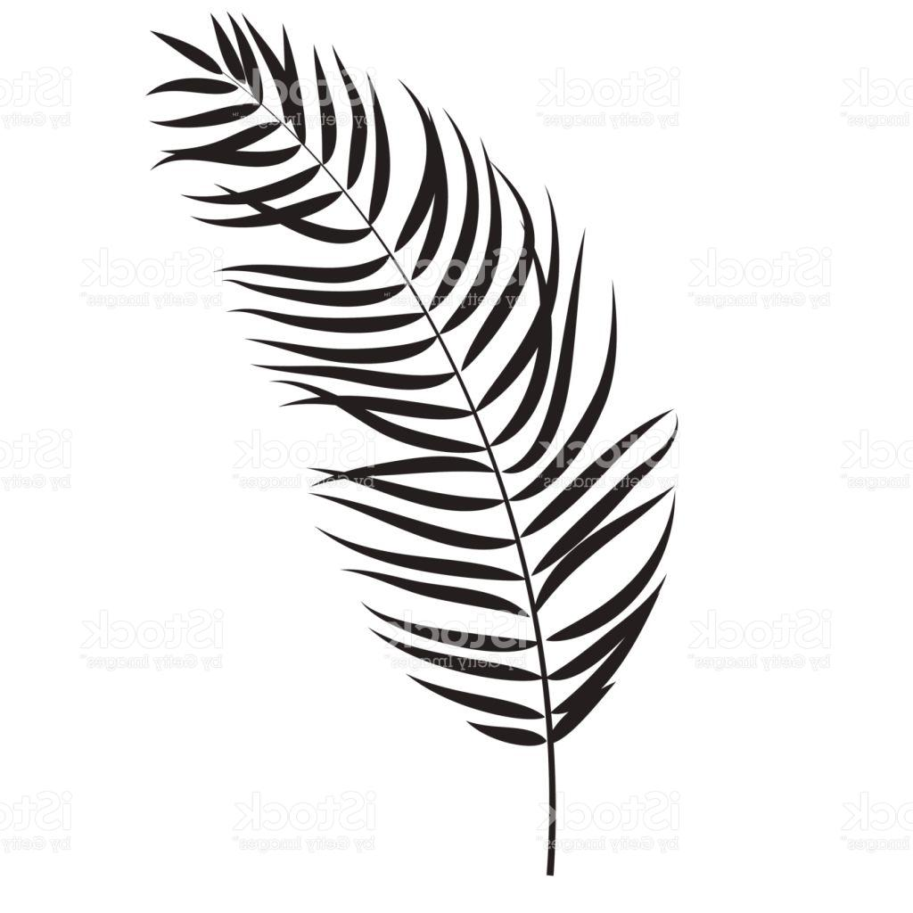 1024x1024 Top Beautifil Palm Tree Leaf Silhouette Background Vector Illustra