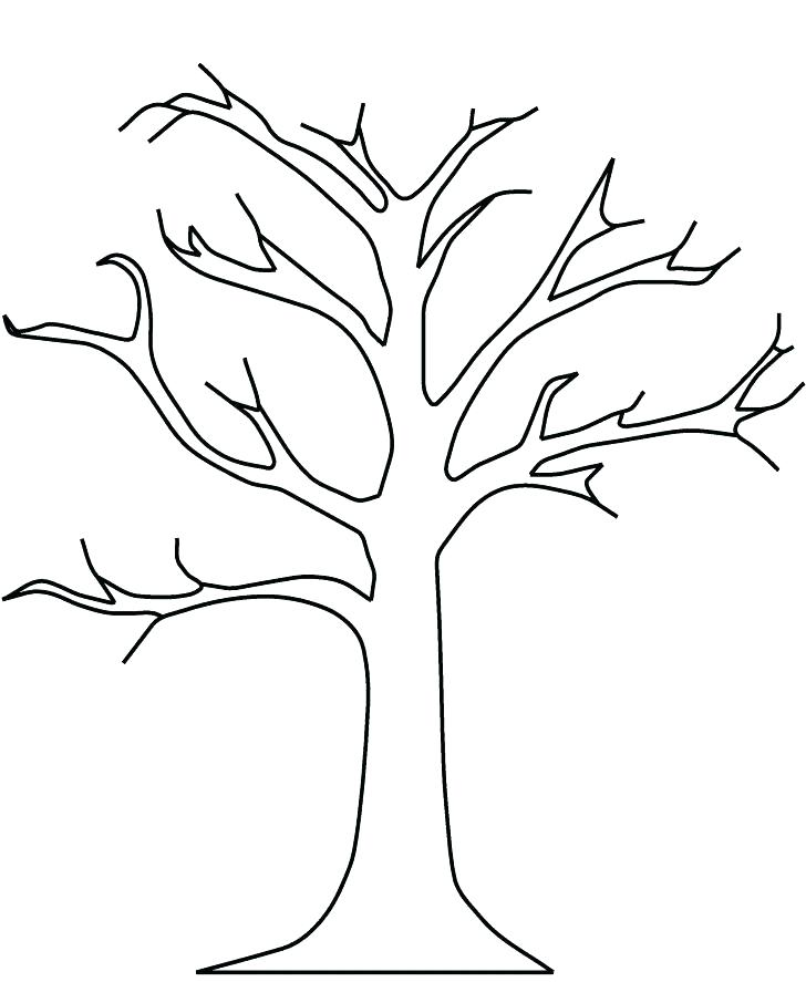 728x887 Tree Leaves Coloring Pages Fall Tree Leaf Coloring Page Palm Tree