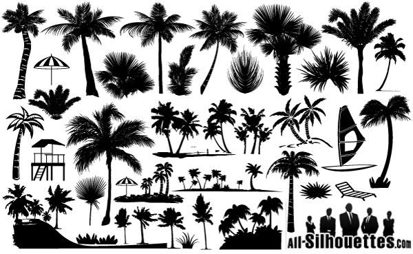 600x369 Drawn Palm Tree Tribal