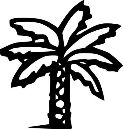 403x425 Lines Clipart Palm Tree