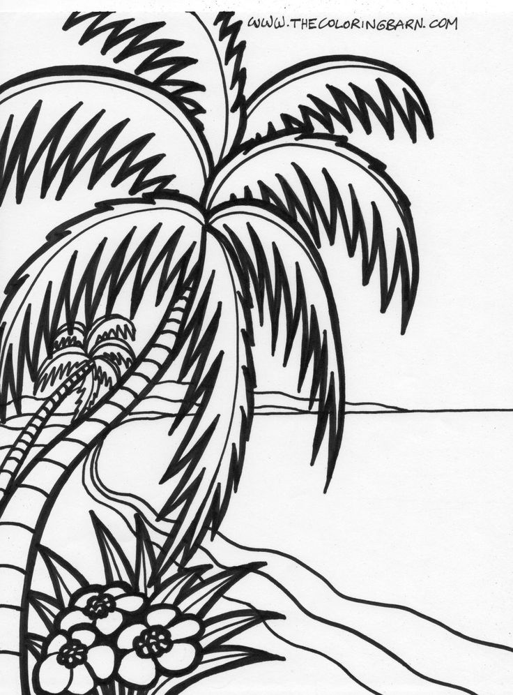 736x996 Ocean Palm Tree Coloring Picture Palm Tree Pattern
