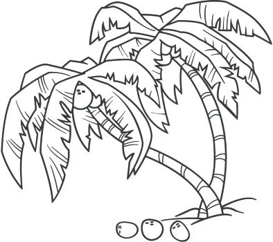 Palm Tree Line Drawing At Getdrawings Com Free For Personal Use