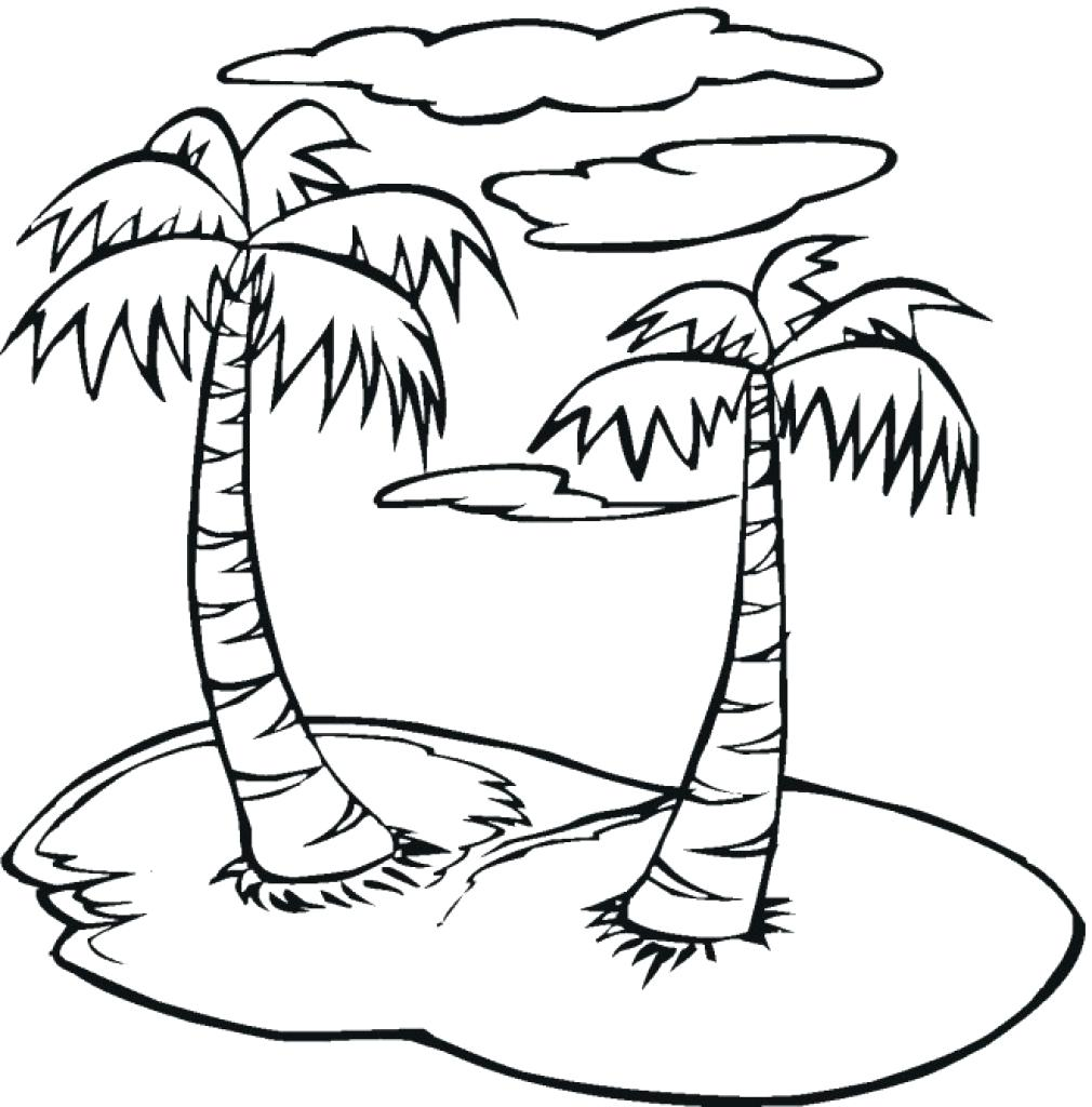 1010x1024 Coloring Palm Tree Coloring Pages