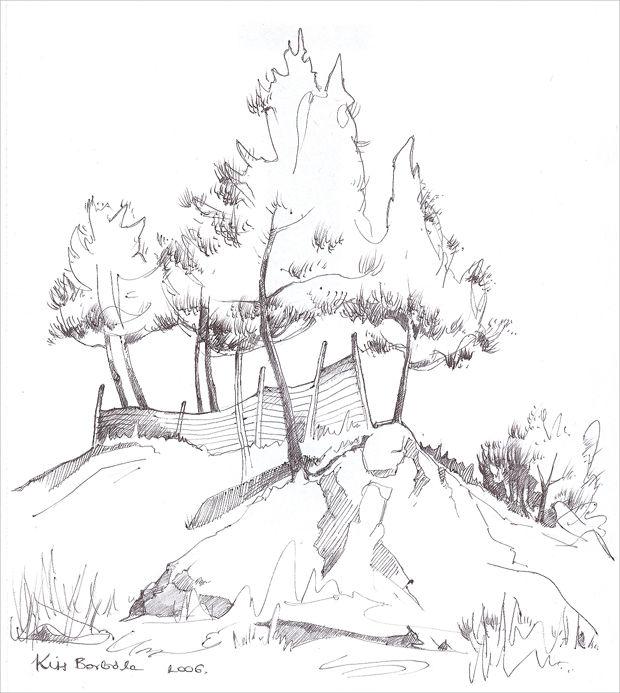 Palm Tree Pencil Drawing