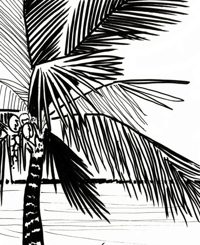784x960 Palm Tree Coloring Page Embroidery Pattern Digital