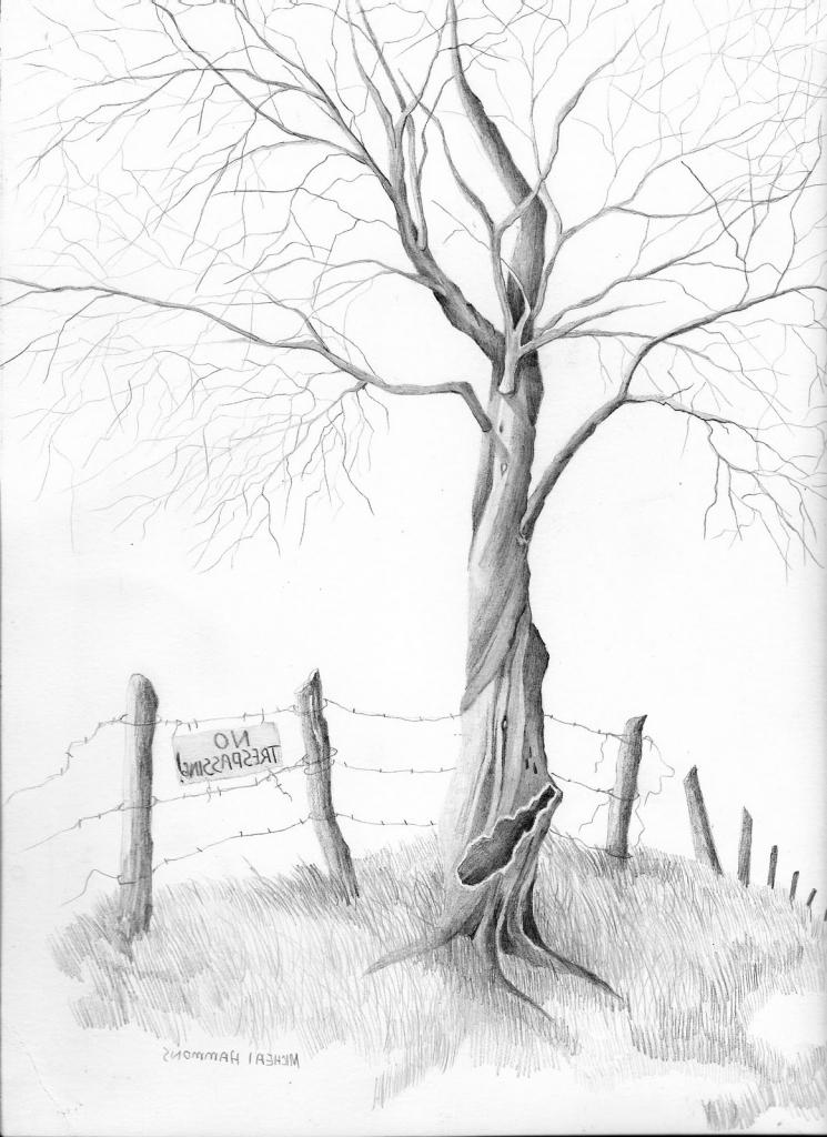 745x1024 Pencil Sketches Trees