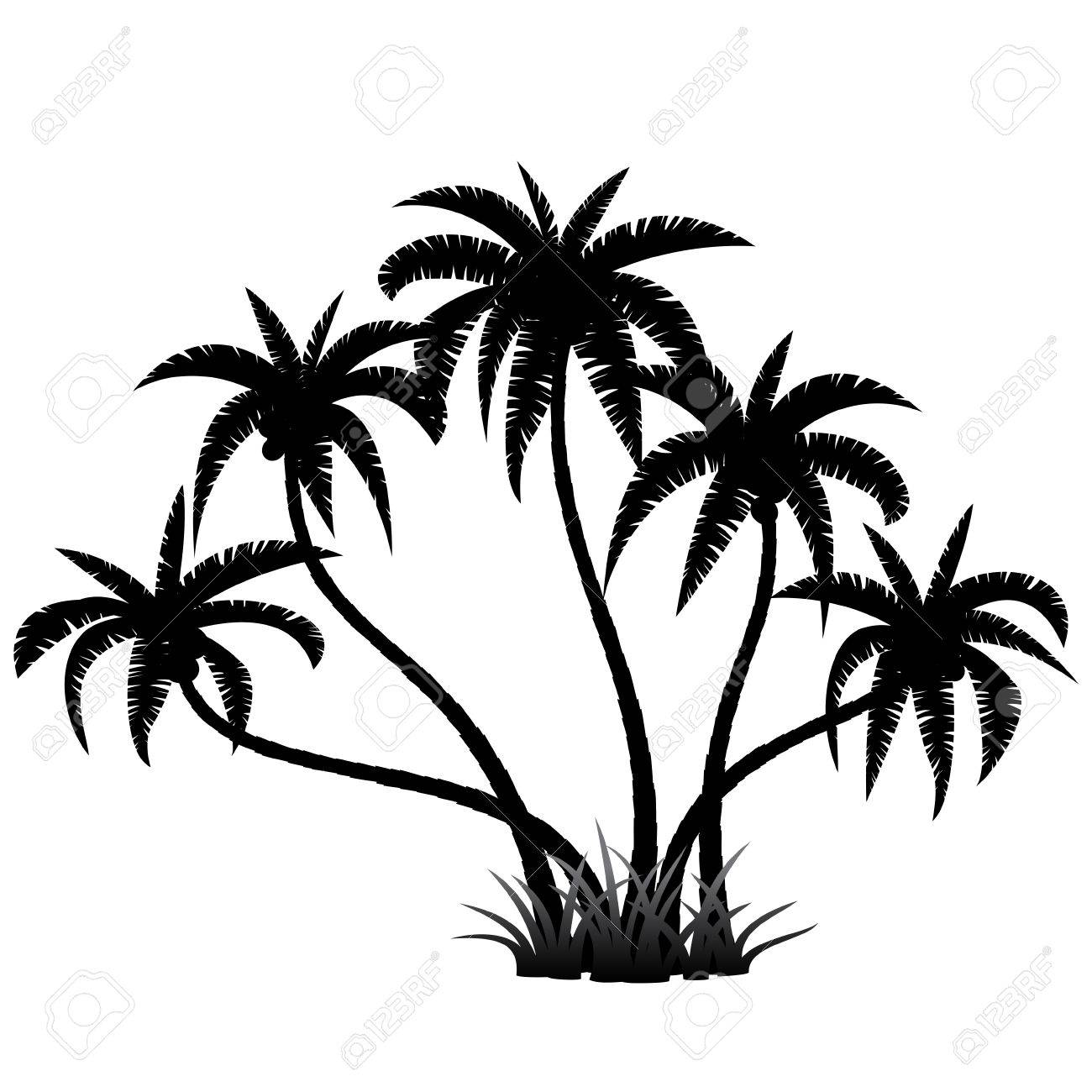 1300x1300 Palm Trees Silhouette On White, Vector Illustration Royalty Free