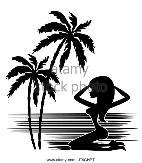 470x540 Tropical Paradise Palm Trees Black And White Stock Photos Amp Images