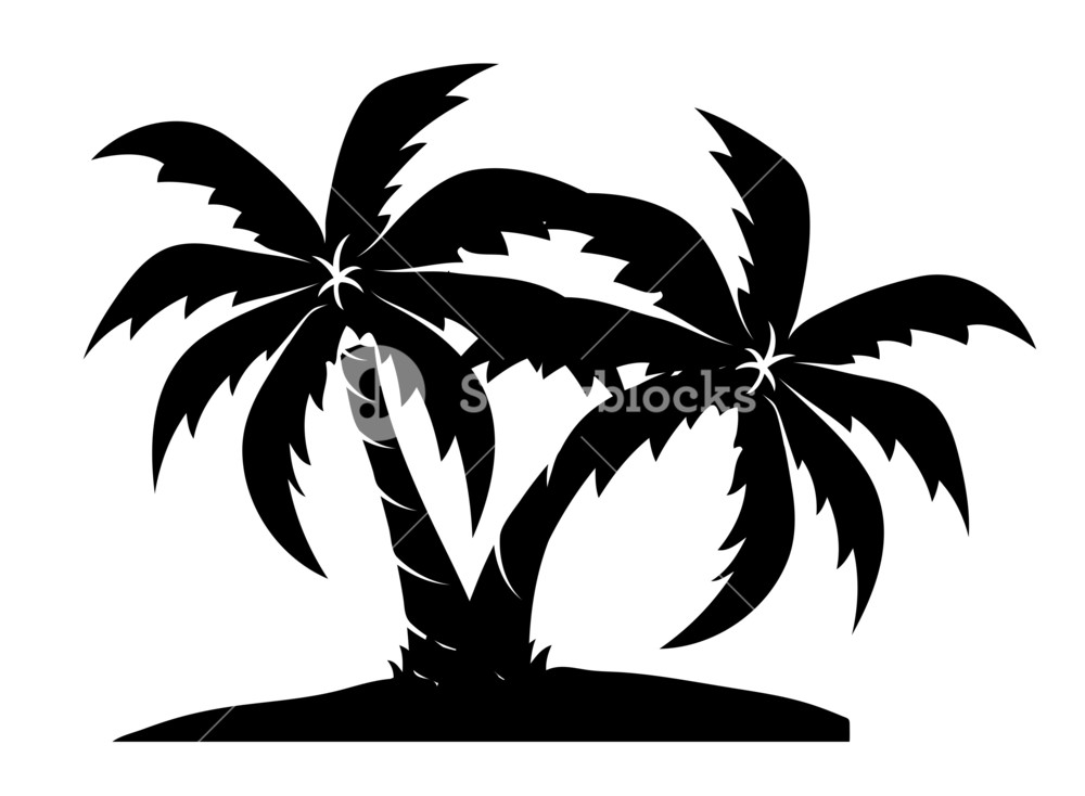 1000x734 Palm Trees At Beach Drawing Royalty Free Stock Image