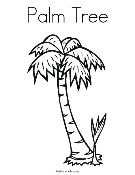 468x605 Palm Tree Coloring Page
