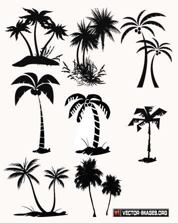 355x444 Pin By Carola Onland On Silhouette Tree Print, Palm