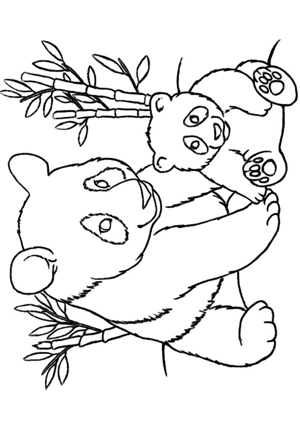 595x842 Stunning Panda Bear Coloring Pages 40 With Additional Coloring
