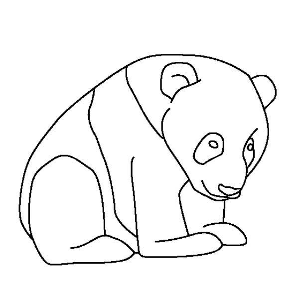 Panda Bear Line Drawing at GetDrawings.com | Free for personal use ...