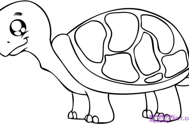 640x420 Cartoon Animals Cute Panda Rofl Lolcom How To Draw A Drawing