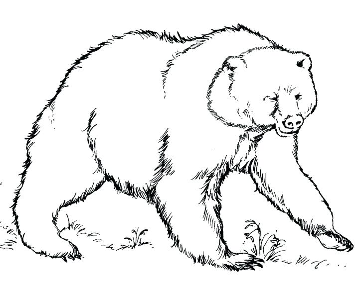 728x581 Panda Bear Coloring Pages Printable Printable Teddy Bear Coloring