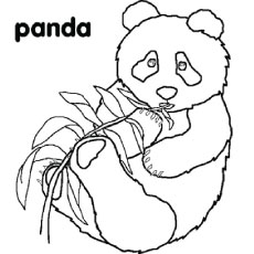 230x230 Panda Coloring Pages For Preschoolers Tags Pandas Coloring Pages