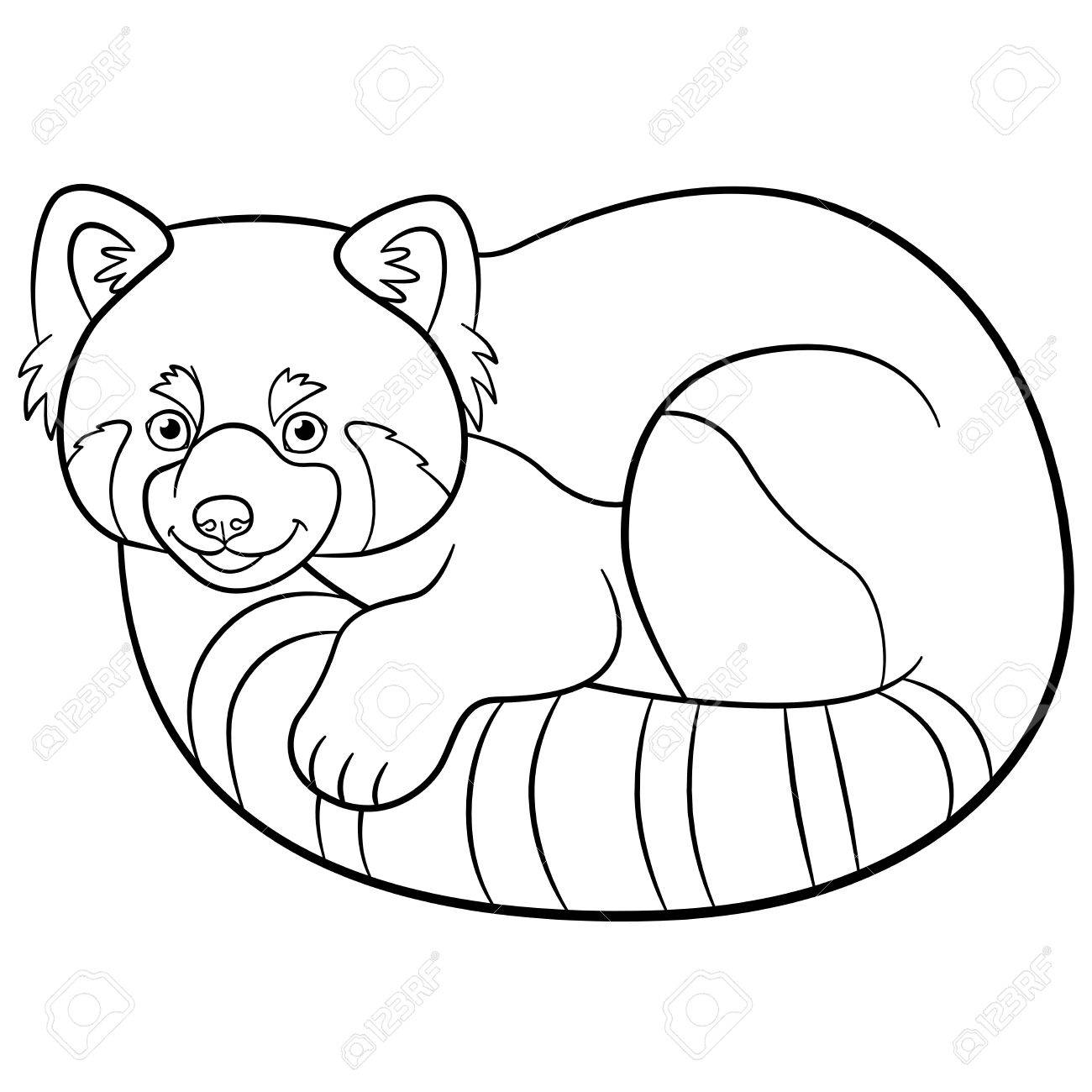 1300x1300 Coloring Pages. Little Cute Red Panda Smiles. Royalty Free