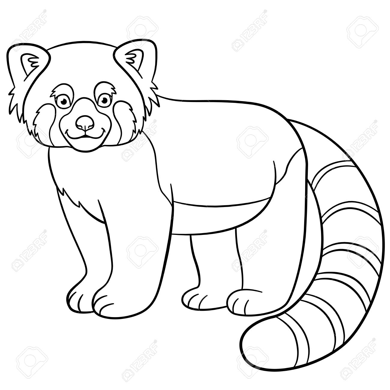 1300x1300 Coloring Pages. Little Cute Red Panda Stands And Smiles. Royalty