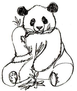300x353 Free Coloring Pages. Drawing Panda With Step By Step Instructions