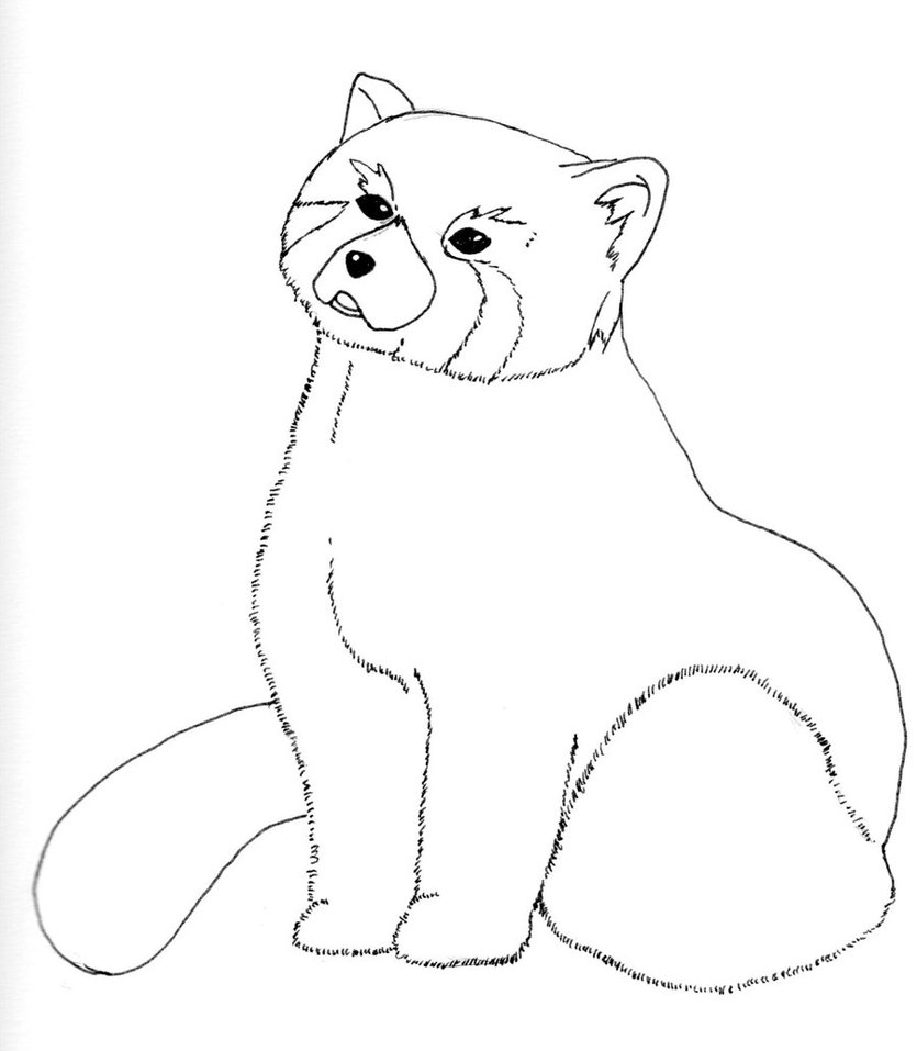 835x957 Red Panda no color by MadHamsterCostumes on DeviantArt