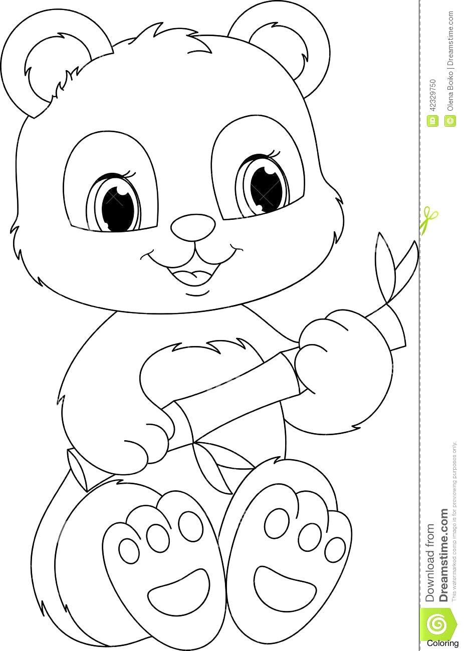 Panda Drawing Cute At Getdrawings Com Free For Personal Use Panda